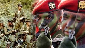 Ketua DPR: Turunkan Pasukan Elite Koopssus TNI Hadapi Separatis Papua