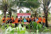 KWT Desa Sei Intan Harapkan Bantuan Bibit dan Sarana Produksi Lainnya