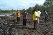 Sambu Group Bangun Tanggul Guna Penyelamatan Pemukiman dan Kebun Masyarakat